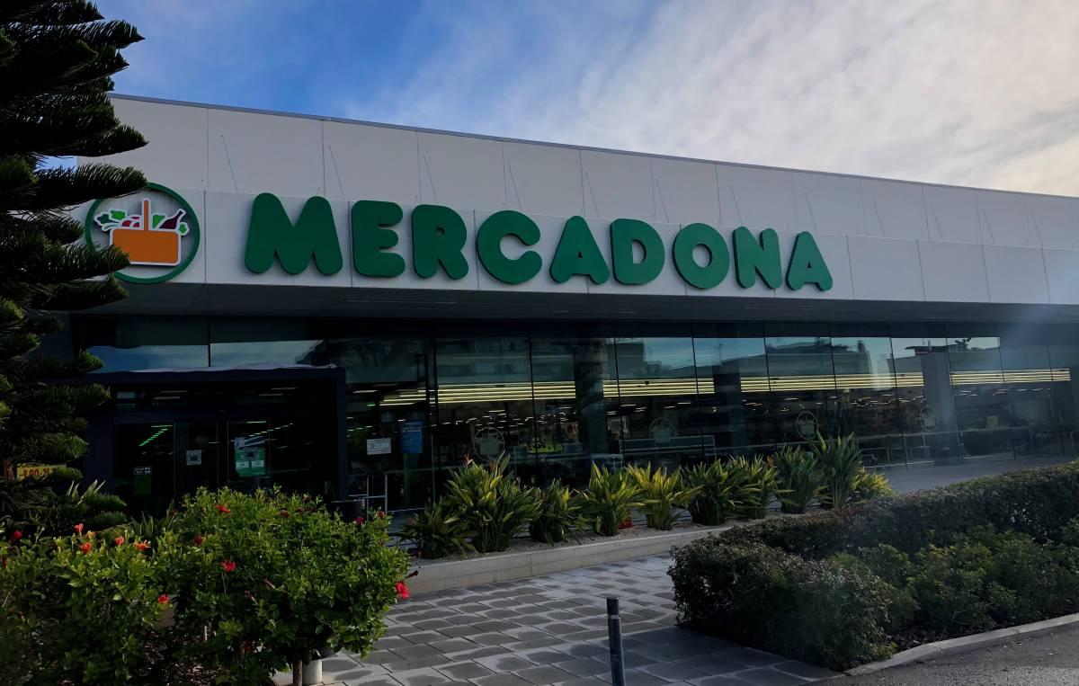 Mercadona inaugura sus primeras tiendas eficientes en calp y san vicente del raspeig alicanteplaza - Muebles en san vicente del raspeig ...