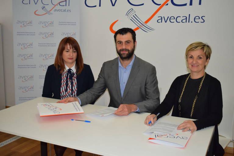 228ed872089 La Asociación Valenciana de Empresarios del Calzado (Avecal) quiere que la  industria del calzado avance a través de la mejora de los procesos  productivos y ...